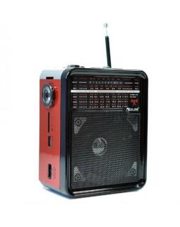 Радиоприемник RX-9100